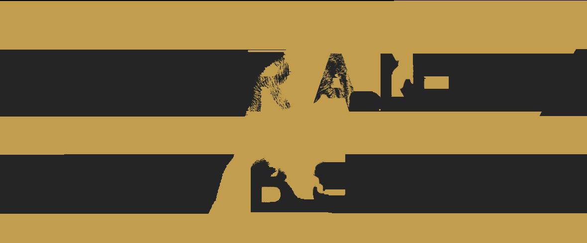 We Brand. We Build.
